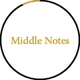 Jizan Perfumes Middle Notes
