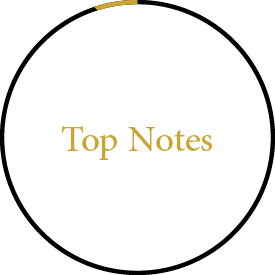 Jizan Perfumes Top Notes